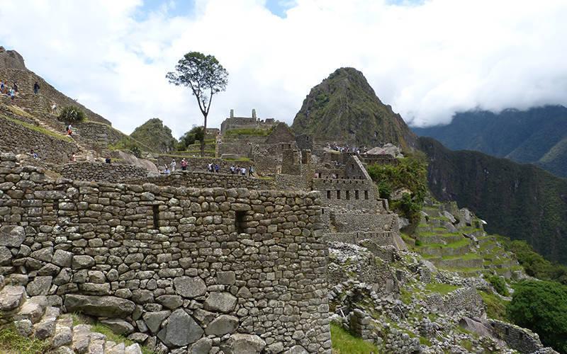 Cusco Traditional